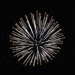 fireworks-600x600