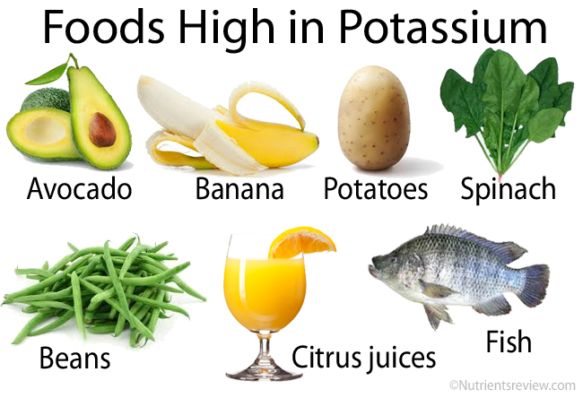 picture about Potassium Rich Foods Chart Printable referred to as Food items Significant inside of Potium for Centre Conditioning Retiree Information
